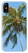 Windblown Coconut Palm IPhone Case