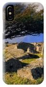 Windswept Hawthorn Tree IPhone Case