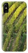 Wine Acreage In Germany IPhone Case