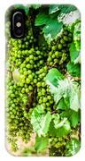 Wine Grapes IPhone Case