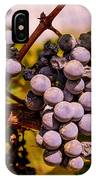 Wine Grapes On The Vine IPhone Case