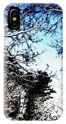Winter Along The Bronx River IPhone Case