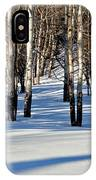 Winter Aspens IPhone Case