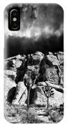 Winter At Joshua Tree IPhone Case