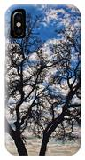 Winter Blue Skys IPhone Case