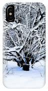 Winter Fresh IPhone Case