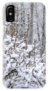Winter Haven 2 IPhone Case