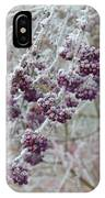 Winter In Lila IPhone Case
