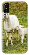 Winter Lamb And Ewe IPhone Case