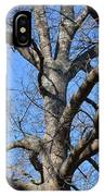 Winter Oak 2014 IPhone Case