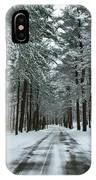 Winter On Mohegan Park Road IPhone Case