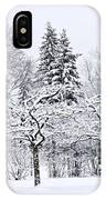 Winter Park Landscape IPhone Case