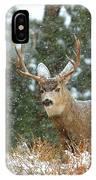 Winter Returns IPhone Case