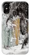 Winter Revelation IPhone Case