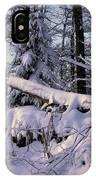 Winter Solemn IPhone Case