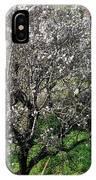 Winter Spanish Nature Almeria Region  IPhone Case