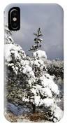 Winter Storm On Natural Bridge - D001598 IPhone Case