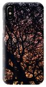 Winter Sunset Silhouette IPhone Case