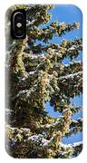 Winter Tale - Featured 3 IPhone Case
