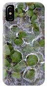 Winter Thaw IPhone Case