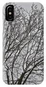 Winter Tree 6 IPhone Case