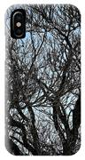 Winter Tree Hill End Nsw IPhone X Case
