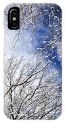 Winter Trees And Blue Sky IPhone Case