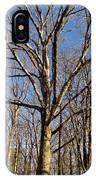Winter White Oak IPhone Case