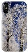 Winter Wonderland 7 IPhone Case