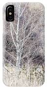 Winter Woodland With Subdued Colors IPhone Case