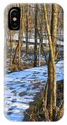 Winter Woods Walk IPhone Case