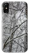 Wintery Day IPhone Case