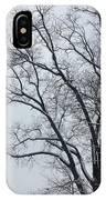 Wintry Tree IPhone Case