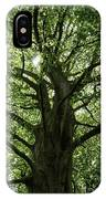 Witness Tree IPhone Case