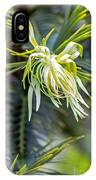 Wollemi Pine IPhone Case