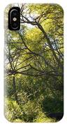 Woman Sitting On Bench - Bright Green Trees Sun Is Shining IPhone Case