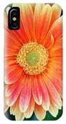 Wonderful Daisy IPhone Case