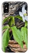 Wood Anemone IPhone Case