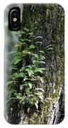 Wood Flora 2013 IPhone Case