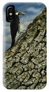 Wood Picker IPhone Case