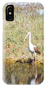 Wood Stork And Ibis And Heron IPhone Case