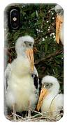 Wood Stork Young In Nest IPhone Case