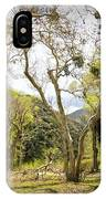 Woodland Glen In The California Vallecito Mountains IPhone Case