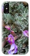 Woolly-pod Locoweed Closeup IPhone Case