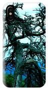 Work Of Art IPhone Case