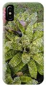 Yellow And Green Bromeliad IPhone Case
