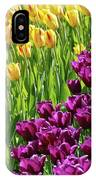Yellow And Purple Tulips IPhone Case