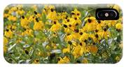Yellow Cone Flowers IPhone Case