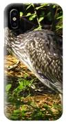 Yellow-crowned Night Heron Eating A Fiddler Crab Dinner IPhone Case