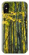 Yellow Fall Birch Leaves Against An IPhone Case